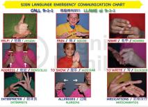 Mini Chart Chinese