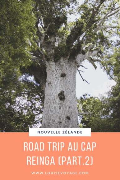 Road trip cap reinga part2 (3)