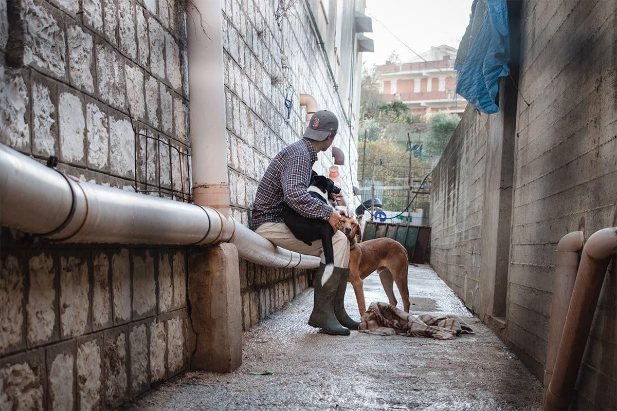 Emile avec les chiens dans un enclos du refuge