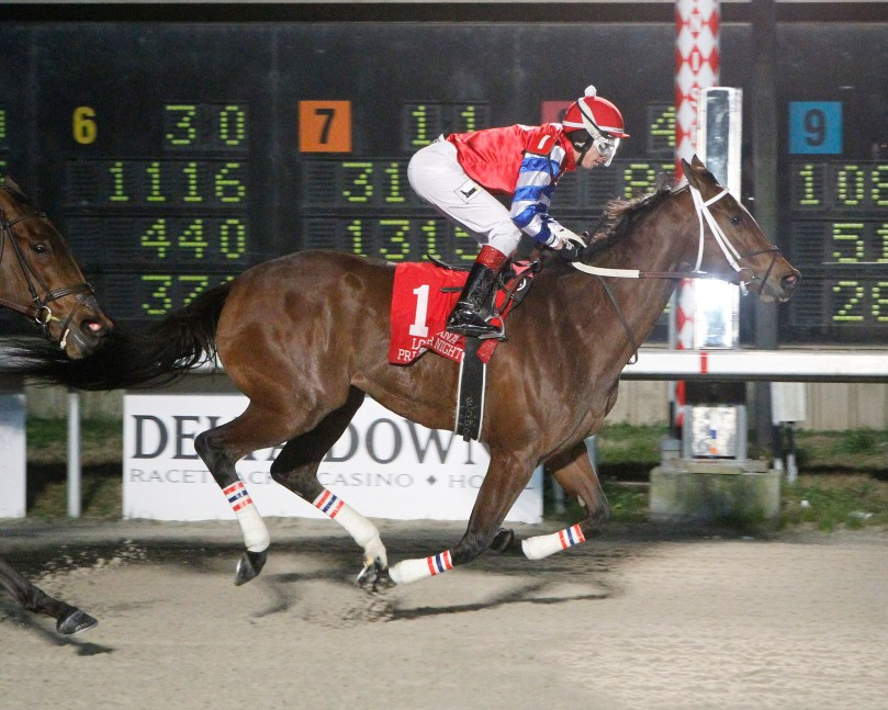 OURS TO RUN - LA Bred Premier Night Matron Stakes - 02-09-19 - R07 - DED-01
