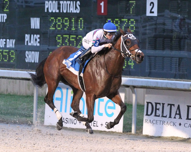 Crescentcitypretty, Azalea Stakes - 03-01-19