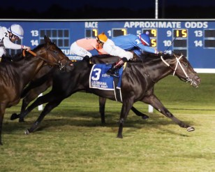 SHANG - Louisiana Legends Turf - 07-04-20 - R07 - EVD - Finish 1