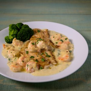 pan fried drum with shrimp sauce on top and side broccoli