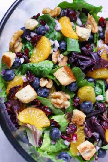 A closeup picture of aBlueberry-Mandarin Ranch Salad.