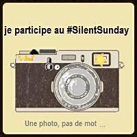 silentsundaylogo