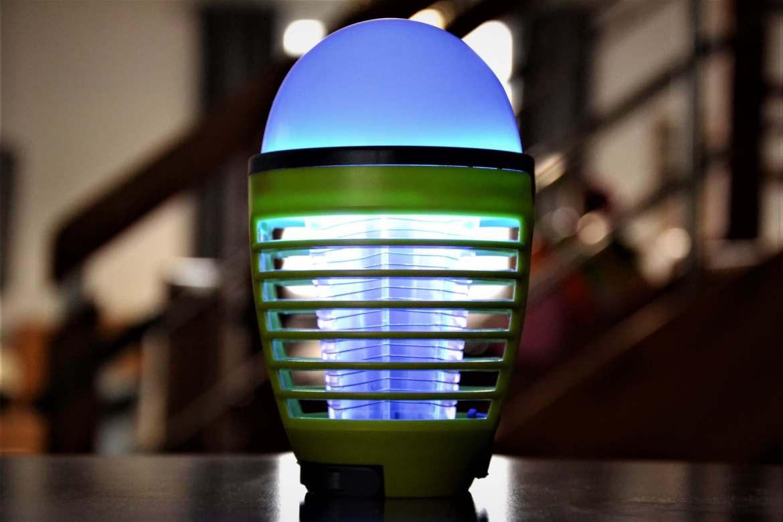 lampe anti moustique tigre lumière bleue