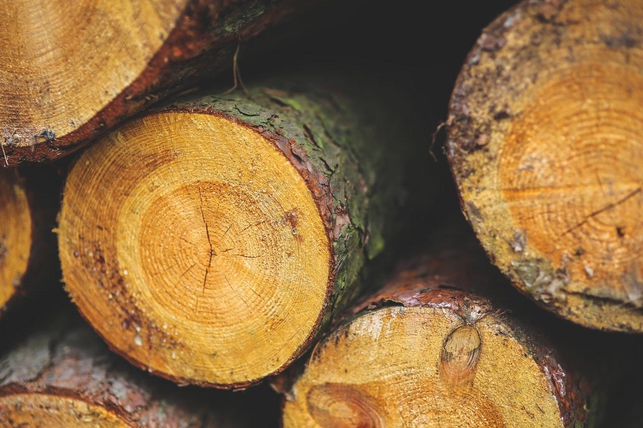 Valitsus nõustus biomassi kasutamisega Narva elektrijaamades
