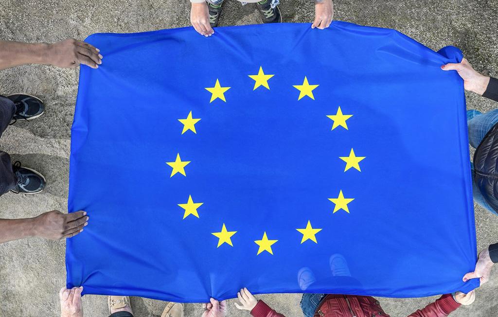 ARVAMUS: Eesti astus ELis sama reha otsa mis NLiidus – lolle seadusi täidetakse Saksa täpsusega