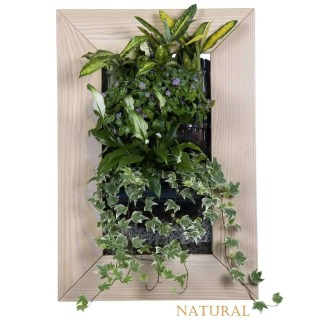 flowerpot for green decor