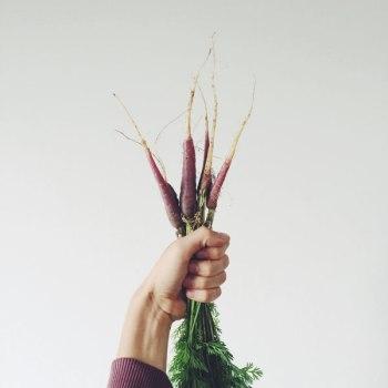 własny ogródek Jak założyć własny ogródek, krótka historia otym 4