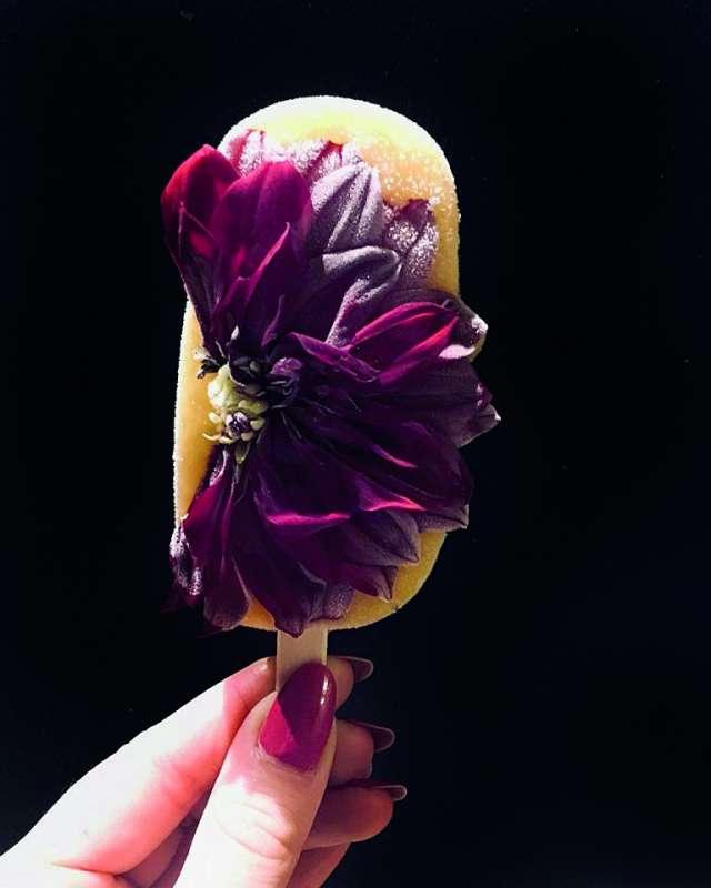 Kwiatki Kwiatki, bratki ilodziarnia 2