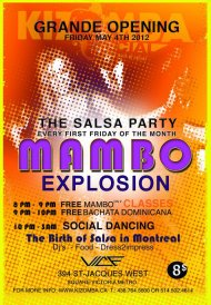 The Salsa Party