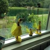...more ducks!