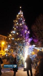 Lourdes : Illumination festive du sapin de Noël de la ville
