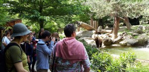 Argelès-Gazost : Séminaire sur le Label «Qualité Tourisme Occitanie»