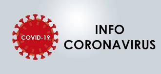 Read more about the article Bulletin d'information COVID-19 en Occitanie du mardi 11 août