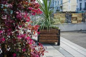 Read more about the article Lourdes : Installation de jardinières fleuries autour de la place Peyramale