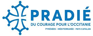Élections régionales :  Réaction d'Aurélien Pradié aux propos de Julien Odoul, candidat du RN