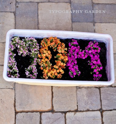 Typography Garden