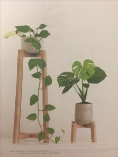 Popular Indoor Plant Stands Ideas For Fresh Home Inspiration 14