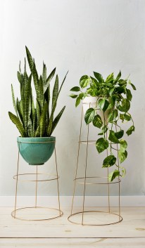 Popular Indoor Plant Stands Ideas For Fresh Home Inspiration 28