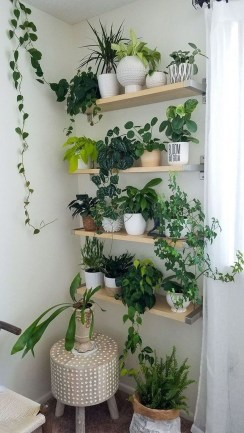 Popular Indoor Plant Stands Ideas For Fresh Home Inspiration 36