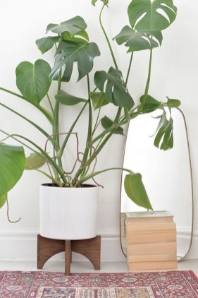Popular Indoor Plant Stands Ideas For Fresh Home Inspiration 42