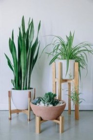 Popular Indoor Plant Stands Ideas For Fresh Home Inspiration 47
