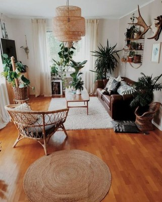 Affordable House Plants For Living Room Decoration 06
