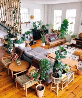 Affordable House Plants For Living Room Decoration 32