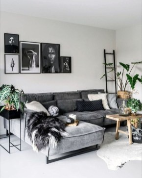 Pretty House Plants Ideas For Living Room Decoration 09