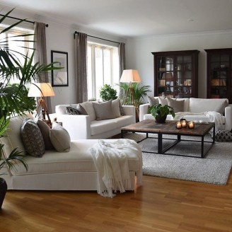 Pretty House Plants Ideas For Living Room Decoration 15