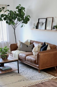 Pretty House Plants Ideas For Living Room Decoration 35