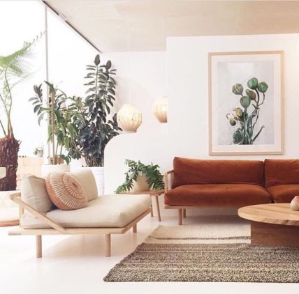 Pretty House Plants Ideas For Living Room Decoration 47
