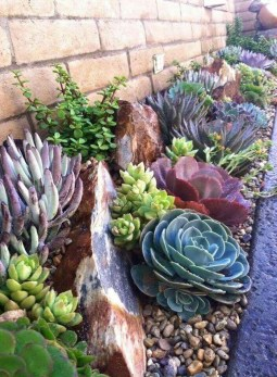 Awesome Succulent Garden Ideas In Your Backyard 24