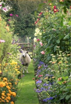 Fascinating Cottage Garden Ideas To Create Cozy Private Spot 19