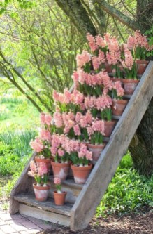 Fascinating Cottage Garden Ideas To Create Cozy Private Spot 21