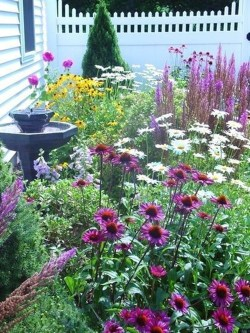 Fascinating Cottage Garden Ideas To Create Cozy Private Spot 23