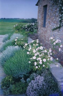 Fascinating Cottage Garden Ideas To Create Cozy Private Spot 46