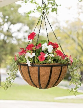 Lovely Hanging Flower To Beautify Your Small Garden In Summer 17