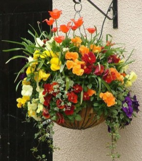 Lovely Hanging Flower To Beautify Your Small Garden In Summer 39