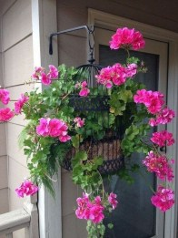 Lovely Hanging Flower To Beautify Your Small Garden In Summer 43