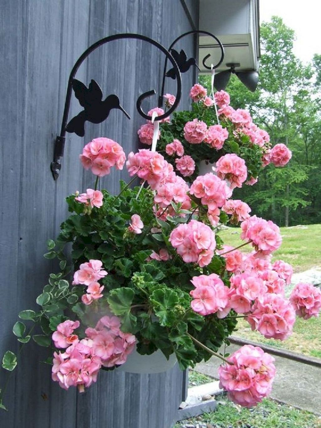 Lovely Hanging Flower To Beautify Your Small Garden In Summer 47