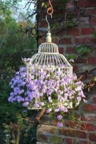 Lovely Hanging Flower To Beautify Your Small Garden In Summer 50