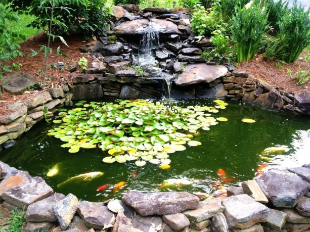 Adorable Fish Ponds Inspirations For Your Home 27