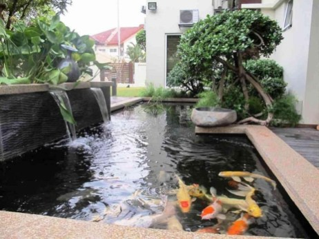 Adorable Fish Ponds Inspirations For Your Home 33