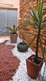 Elegant Indoor Rock Garden Ideas That Can Enhance Your Home Style 01