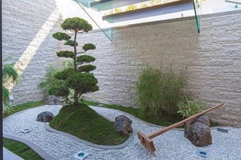 Elegant Indoor Rock Garden Ideas That Can Enhance Your Home Style 31