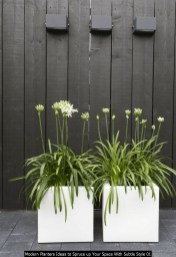 Modern Planters Ideas To Spruce Up Your Space With Subtle Style 01