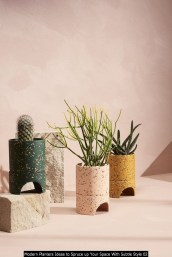 Modern Planters Ideas To Spruce Up Your Space With Subtle Style 02